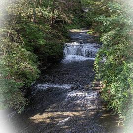 Shaquaga Creek by William Norton