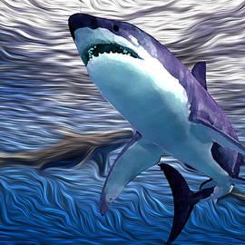 Shark Tank 1 by Aldane Wynter