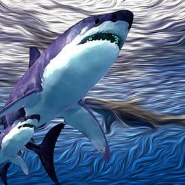 shark Tank 3 by Aldane Wynter