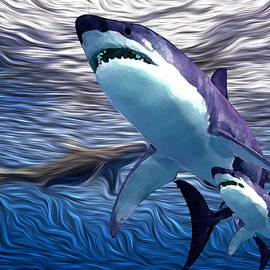 Shark Tank 4 by Aldane Wynter