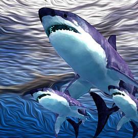 Shark Tank 5 by Aldane Wynter