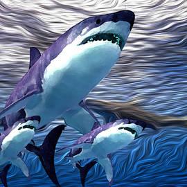 Shark Tank 6 by Aldane Wynter