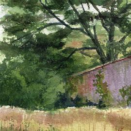 Shed in Kentucky  by Janet Felts