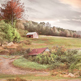 Sheep on the Country Farm by Debra and Dave Vanderlaan