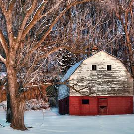 Sheltered - Iowa Barn by Nikolyn McDonald
