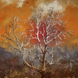 Shenandoah Dawn by Lois Bryan