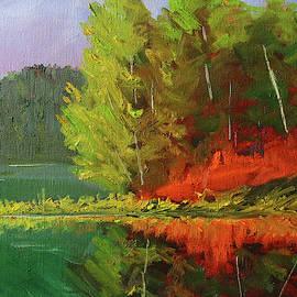 Shoreline Color Landscape by Nancy Merkle