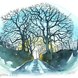 Shropshire Lane by Luisa Millicent
