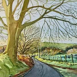 Ratlinghope Lane - Shropshire by Luisa Millicent