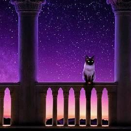 Siamese Cat by KaFra Art