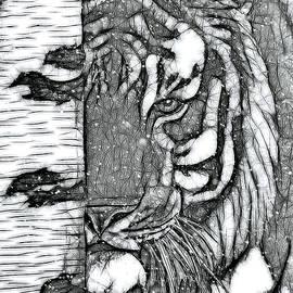 Siberian Tiger by Lynn A Marie