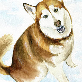 Sienna Siberian Husky Painting by Dora Hathazi Mendes