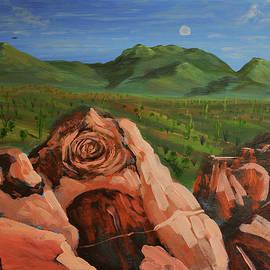 Signal Hill Petroglyph, Rock Art, Tucson, Arizona  by Chance Kafka