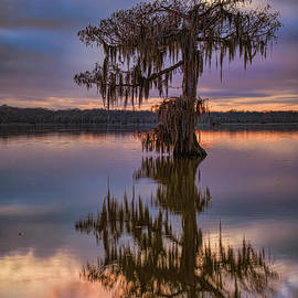 Silence in the Deep South by Bonnie Barry