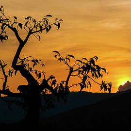 Silhouette At Sunset by Rob Hemphill