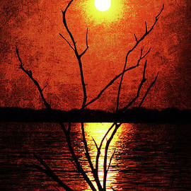 Silhouettes and Reflections by Lisa Porier