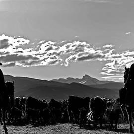 Silohuette Cowboys   by Julieta Belmont