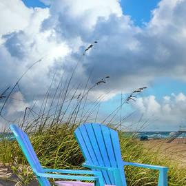 Sitting on the Beach Dunes II by Debra and Dave Vanderlaan
