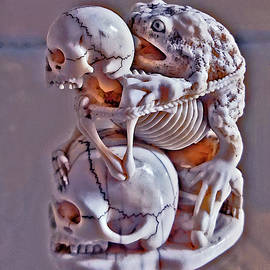 Skeleton, Scull and Toad. by Andy i - Za