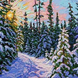 Ski Trail by Rob MacArthur