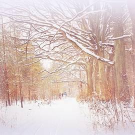 Skiing in the Forest #2 by Slawek Aniol