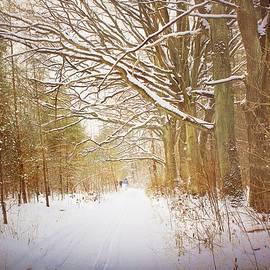 Skiing in the Forest by Slawek Aniol