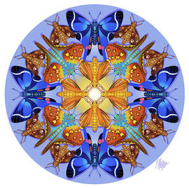Skipper Butterfly Collection Mandala by Tim Phelps