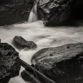 Skokomish river 10-20-106 by Mike Penney
