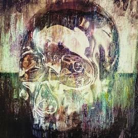 Skull 10 by C Jay