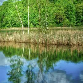 Skunk Lake Reflection by Trey Foerster