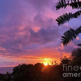 Sky Beauty by Karen Nicholson