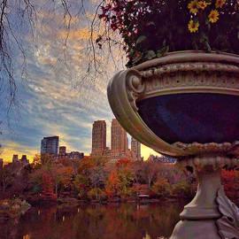Sky Gems - Sunset in the Park by Miriam Danar