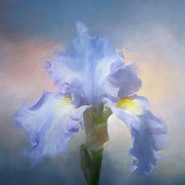 Sky Painted Lily by Terry Davis