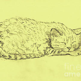 Sleeping Dasha by Galina Lavrova