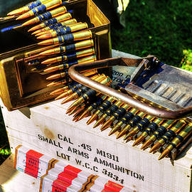 Small Arms Ammunition  by Paul Thompson