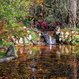 Small pond in a city park in autumn by Alex Lyubar