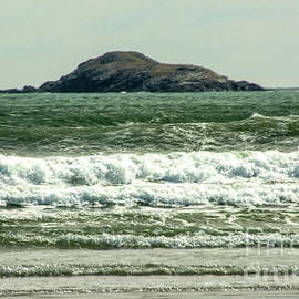Small Waves by Ruth H Curtis