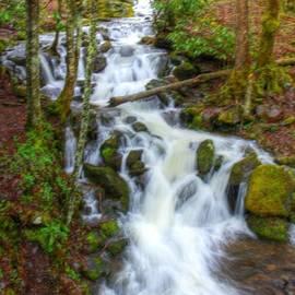 Smoky mountain cascades by Charlene Cox