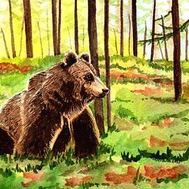 Smoky Mountains National Park Bear