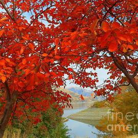 Snake River Hells Canyon National Recreation Area Oregon Idaho by Art Sandi