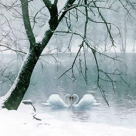 Winter Waltz in Snow  by Jessica Jenney