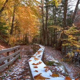 Snoliage in Vermont by Joann Vitali