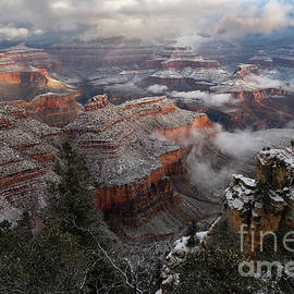 Snow and Fog on Winter Morning at Grand Canyon National Park by Tom Schwabel