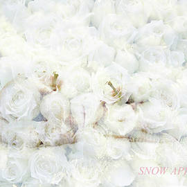 Snow apple by Ekaterina Yakshina