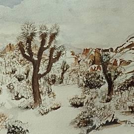 Snow at Joshua Tree N. P. by RD Erickson