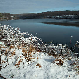 Snow Covered Riverside by Karol Livote