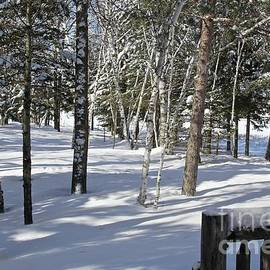 Snow Filled Moments by Ann Brown