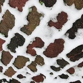 Snow Grid Pattern by Douglas Fromm