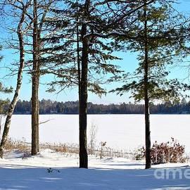 Snow Laden Lake by Ann Brown