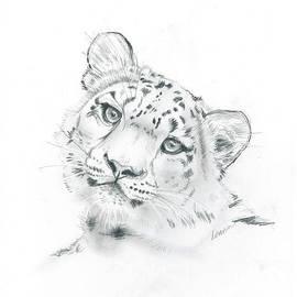 Snow Leopard by Leann Horrocks